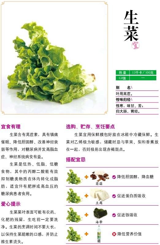 22、宜食蔬菜——生菜